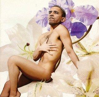 obama erotica