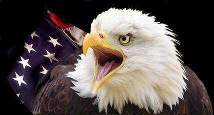 eaglepoker333