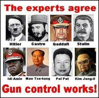 gun_control_works