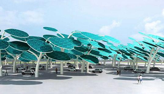 solar car forest