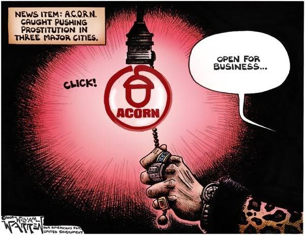 acorn_and_obama