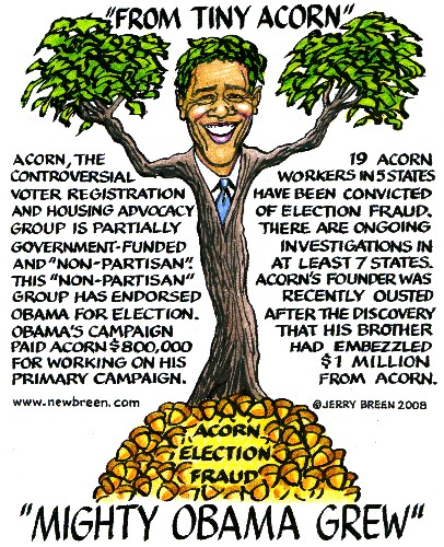 obummer crimminal elected