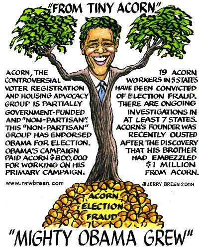 barack-obama-from-a-tiny-acorn-mighty-obama-grew