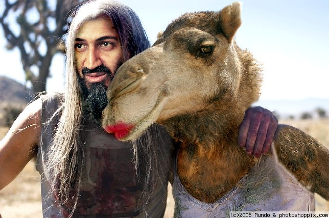 [Image: laden_and_camel.jpg?w=644&h=428]