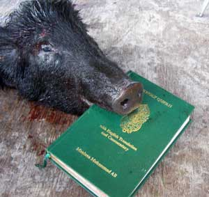 pig_blood_koran_02