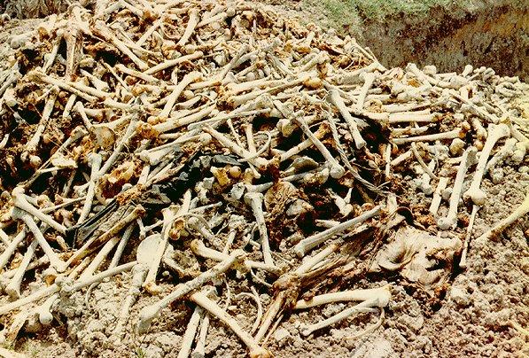 mass-grave