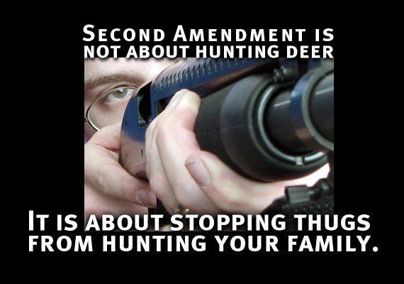 good thesis statement against gun control