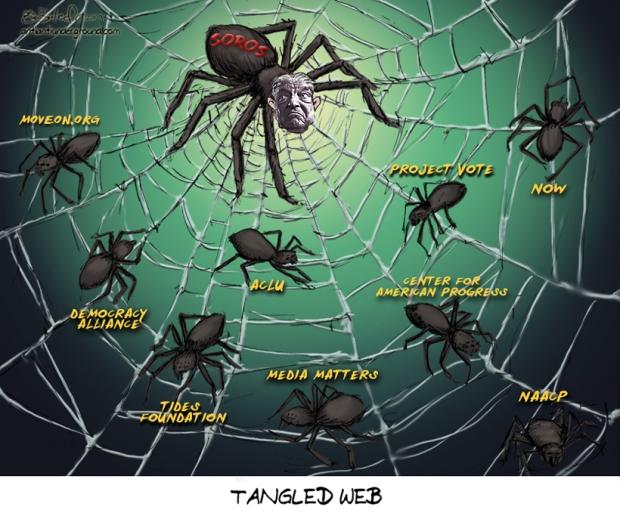 soros-spider