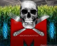 monsantoskull67t6