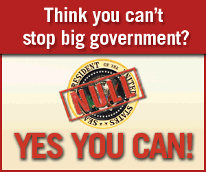 nullification-yes-you-can