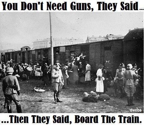gun-control-holocaust