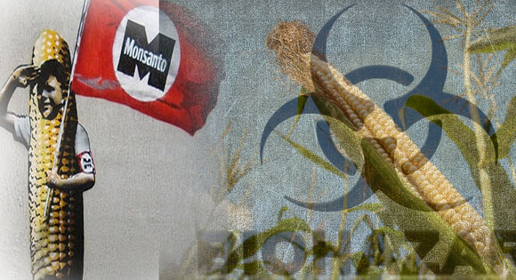 Monsanto out of Europe