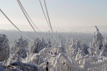 Power lines and trees are seen covered in snow in the village of Wystepa, near Kielce in central Poland, January 24, 2010. The temperature is to drop to below minus thirty degrees Celsius in some parts of Poland according to local media.  REUTERS/Peter Andrews (POLAND - Tags: ENVIRONMENT)