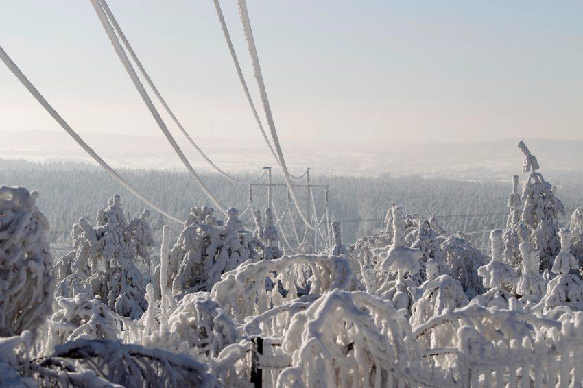 Power lines and trees are seen covered in snow in the village of Wystepa