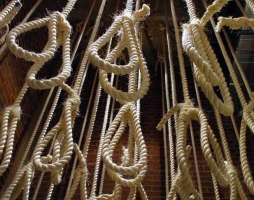 hang noose