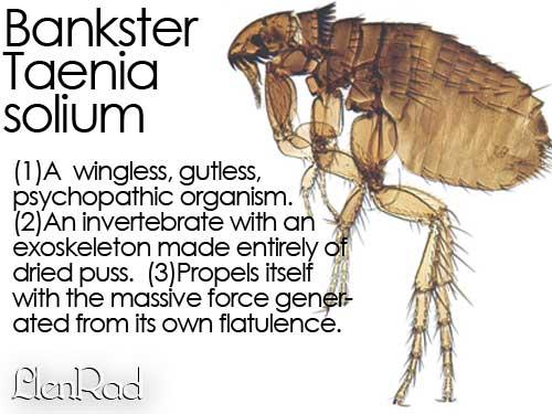 Bankster-Tania-Solium