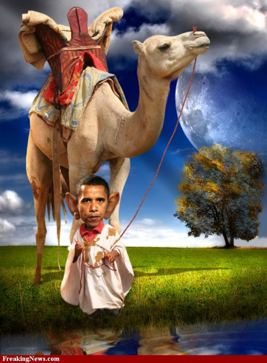 Barack-Obama-with-Camel--54908
