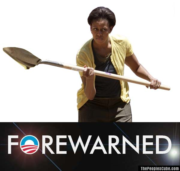 SHOVEL READY JOBS ~ WHERE ARE THEY?