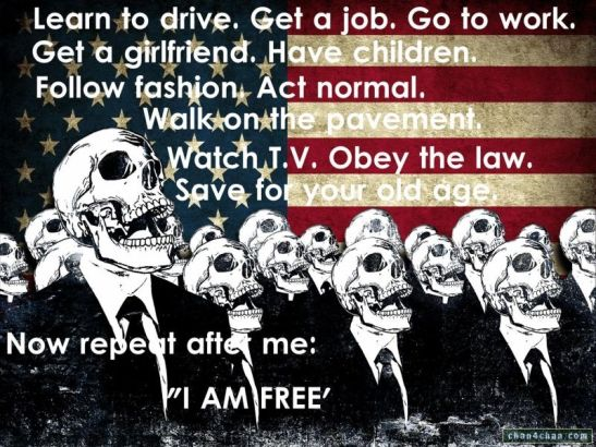 i-am-free-skulls-flag-america-drive-job-work-girlfriend-children-fashion-normal-pavement-tv-obey-law-save-repeat-after-me