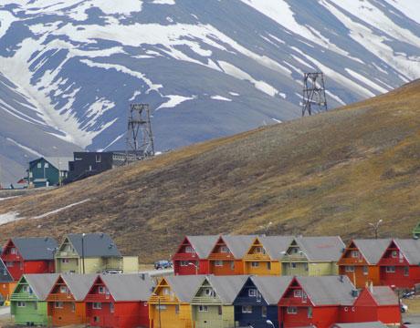 Svalbard Seeds