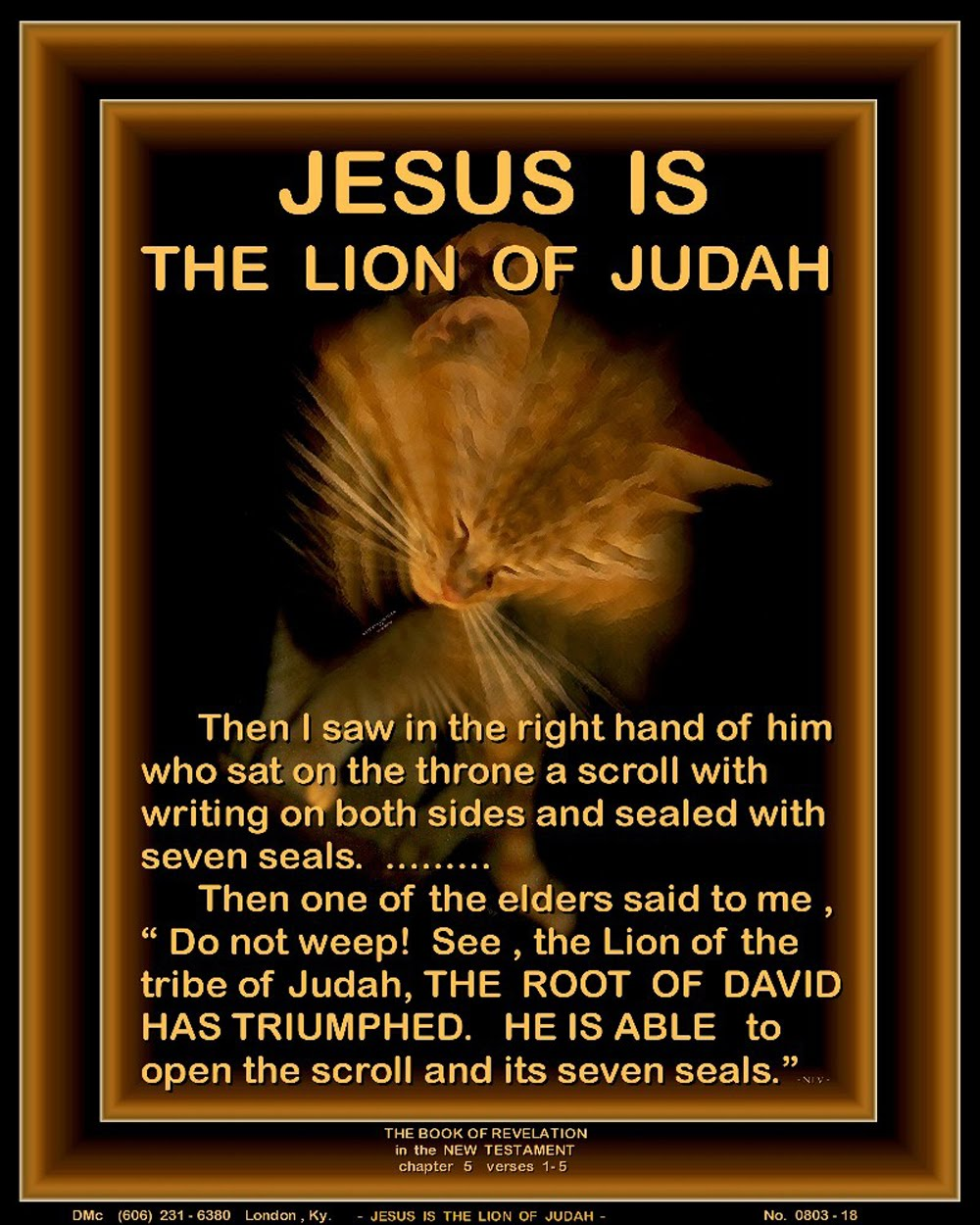 JESUS IS THE LION OF JUDAH