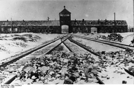 Auschwitz FEMA Death Camp