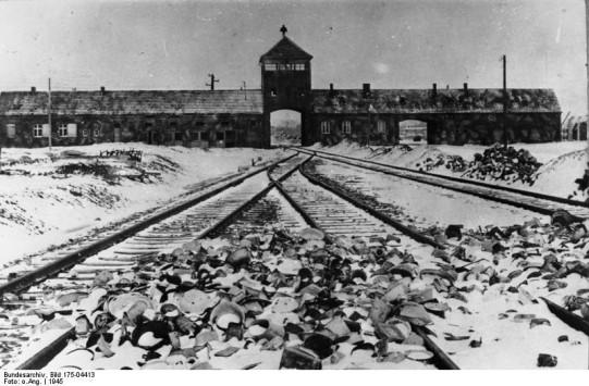 Auschwitz FEMA Death Camp