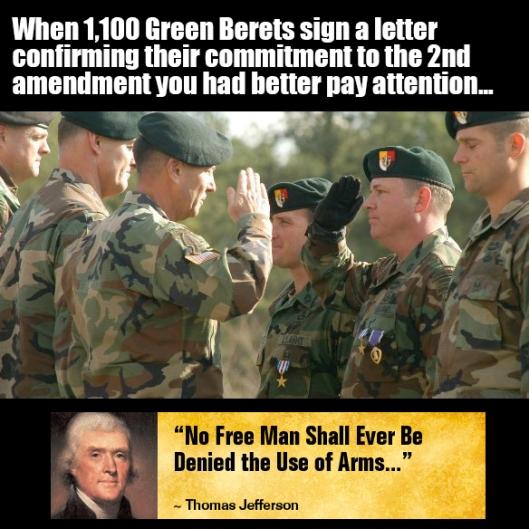 Green berets gun