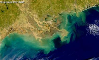 British Petroleum's Gulf Dead Zone.