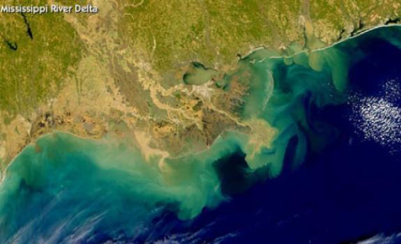 gulf dead zone oil