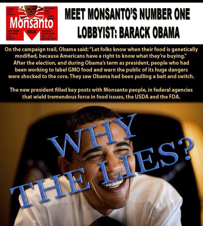 obama lies monsanto