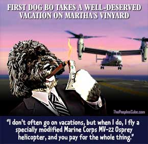 Bo_Obama_Dog_Vacation_Helicopter_290
