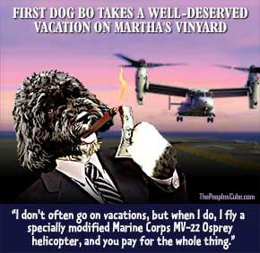 Bo_Obama_Dog_Vacation_Helicopter_290