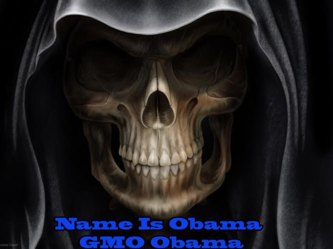 GMO Obama