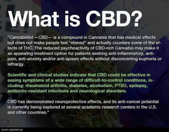 Marijuana CBD