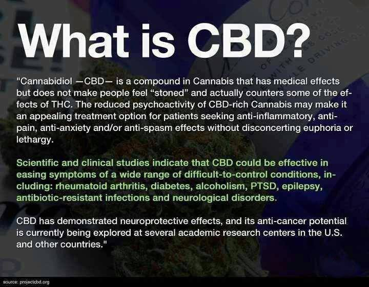 Big Pharma and the Medical Health Industry What-are-cbd-cannabinoids