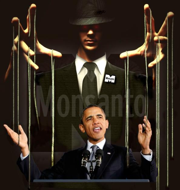 Obama puppet monsanto gmo