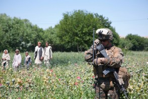 U.S. tax paid for soldiers used to protect Rothschild's opium plants in Afghanistan
