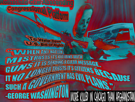 washington gun
