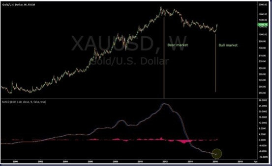 Gold Hook MACD