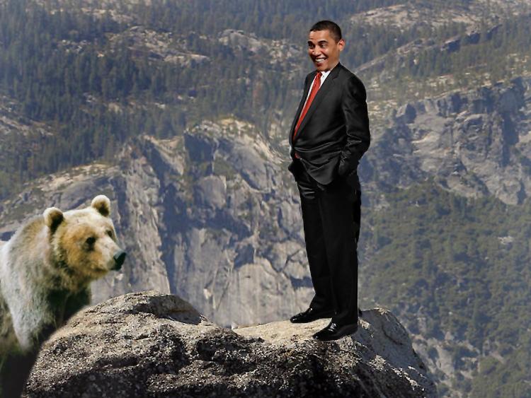 bear Russia obama cliff short